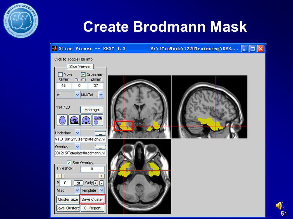 51 Create Brodmann Mask