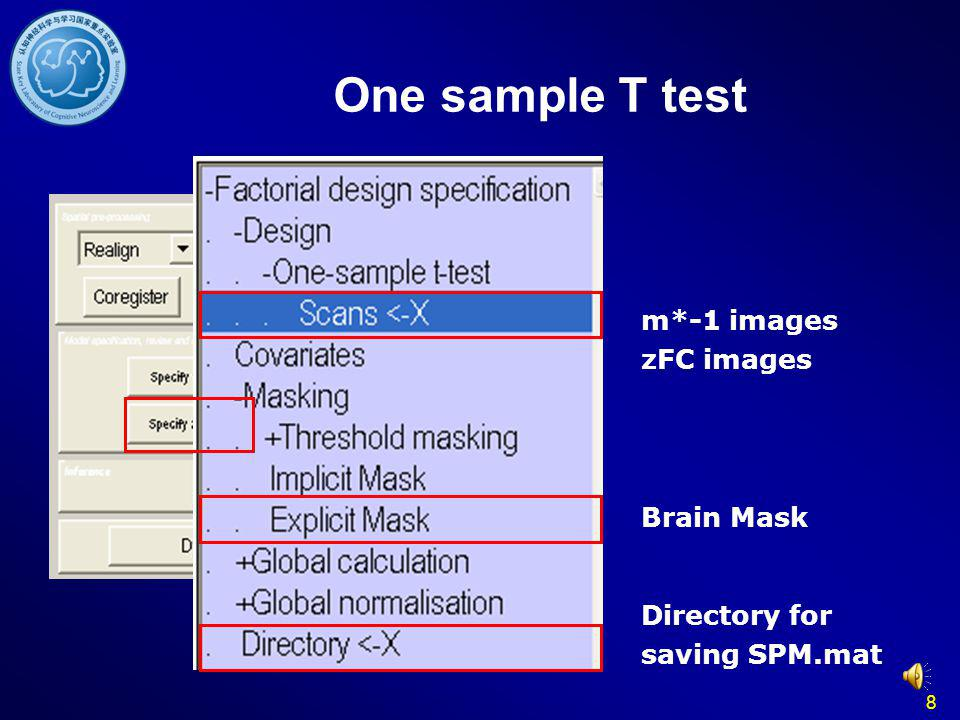 8 m*-1 images zFC images Directory for saving SPM.mat Brain Mask