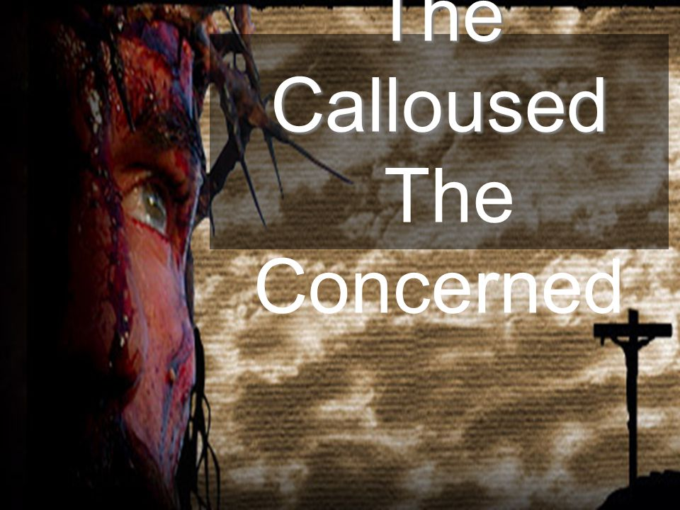 The Calloused The Calloused The Concerned