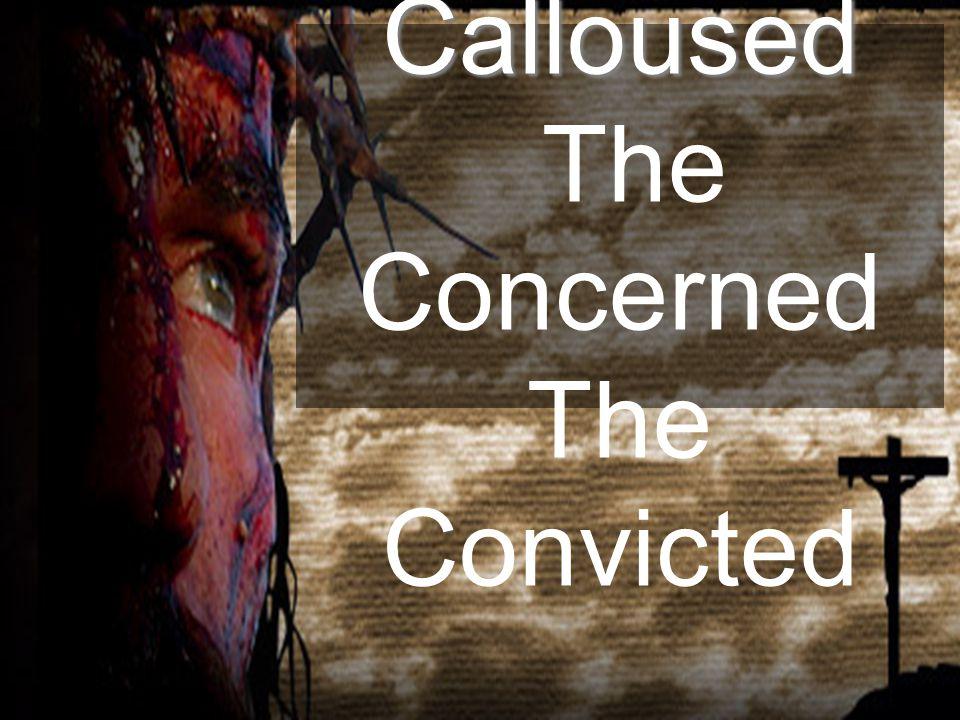 The Calloused The Calloused The Concerned The Convicted