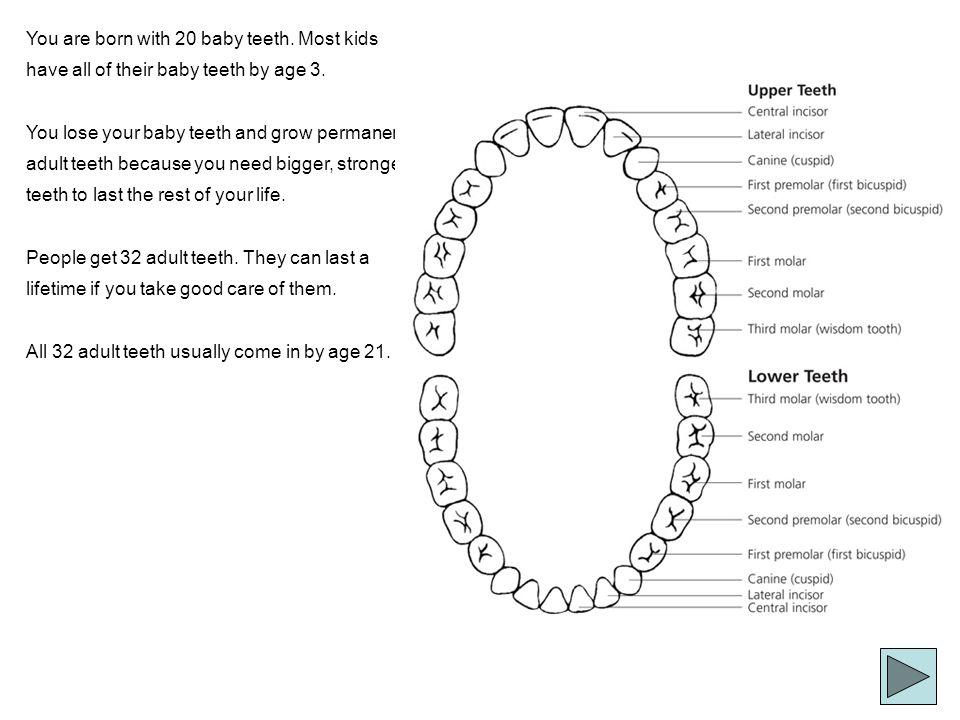 Gum Disease Periodontitis If not treated, gingivitis can lead to periodontitis.