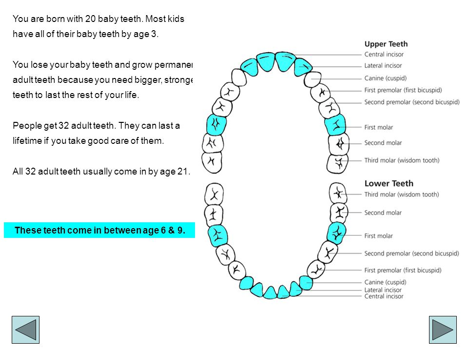 You are born with 20 baby teeth.Most kids have all of their baby teeth by age 3.