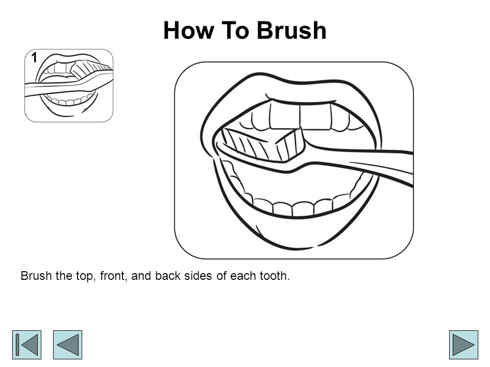 How To Brush Brush the top, front, and back sides of each tooth. 1