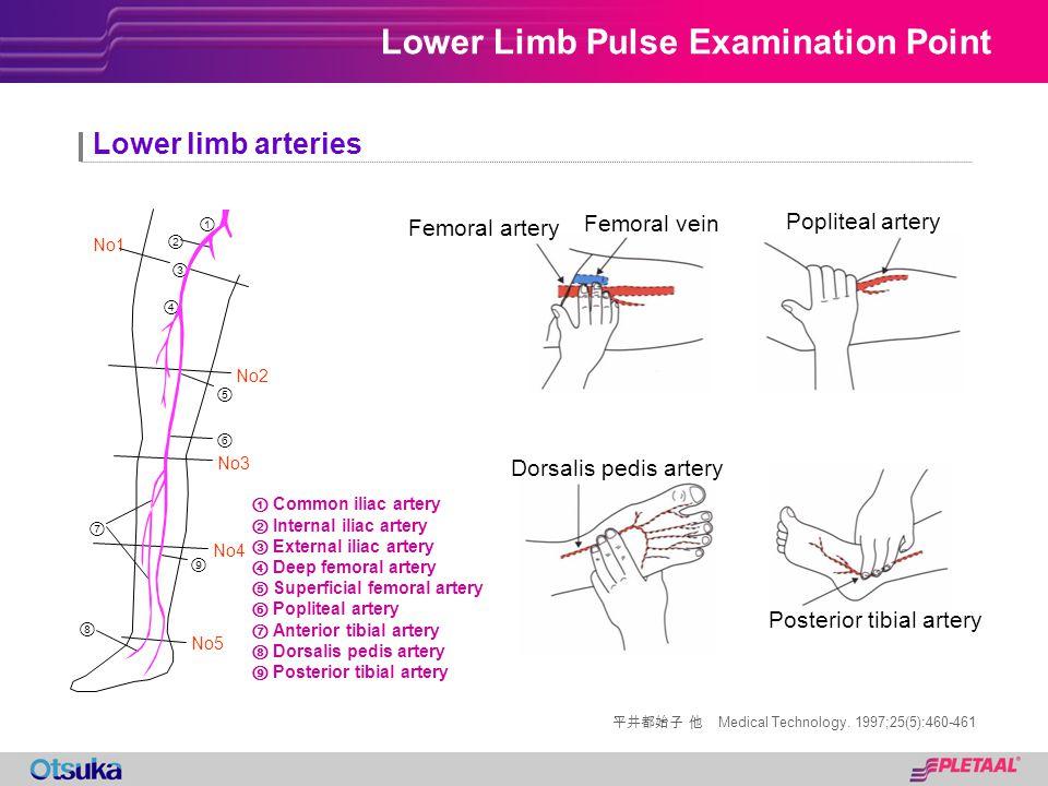 Lower Limb Pulse Examination Point Medical Technology. 1997;25(5):460-461 Lower limb arteries Common iliac artery Internal iliac artery External iliac
