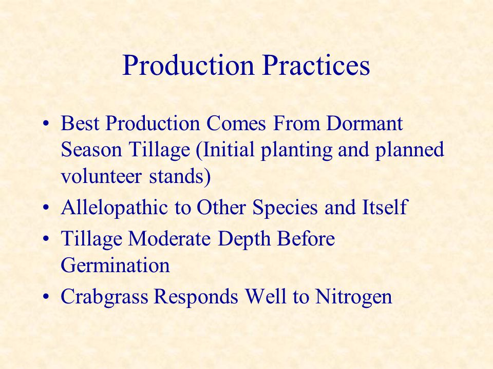 Production Practices Best Production Comes From Dormant Season Tillage (Initial planting and planned volunteer stands) Allelopathic to Other Species a
