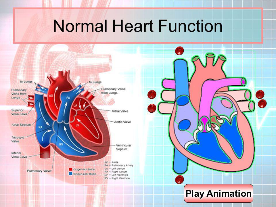 Normal Heart Function Play Animation