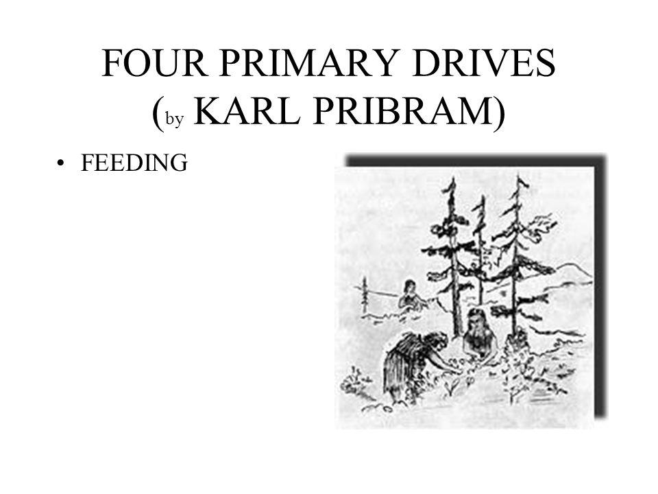 FOUR PRIMARY DRIVES ( by KARL PRIBRAM) FEEDING