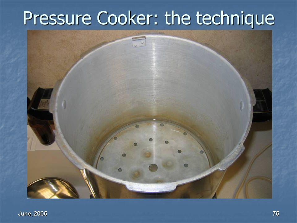 June, 200575 Pressure Cooker: the technique