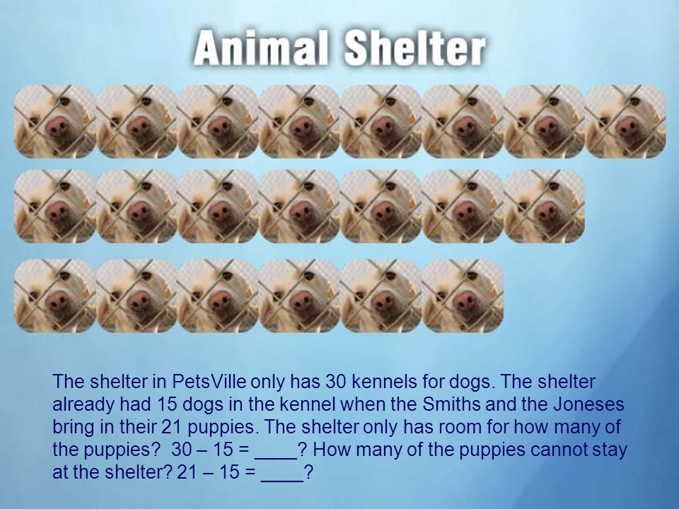 The shelter in PetsVille only has 30 kennels for dogs.