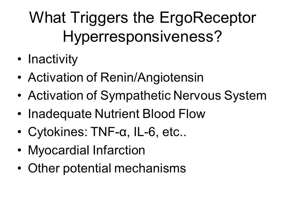 What Triggers the ErgoReceptor Hyperresponsiveness? Inactivity Activation of Renin/Angiotensin Activation of Sympathetic Nervous System Inadequate Nut