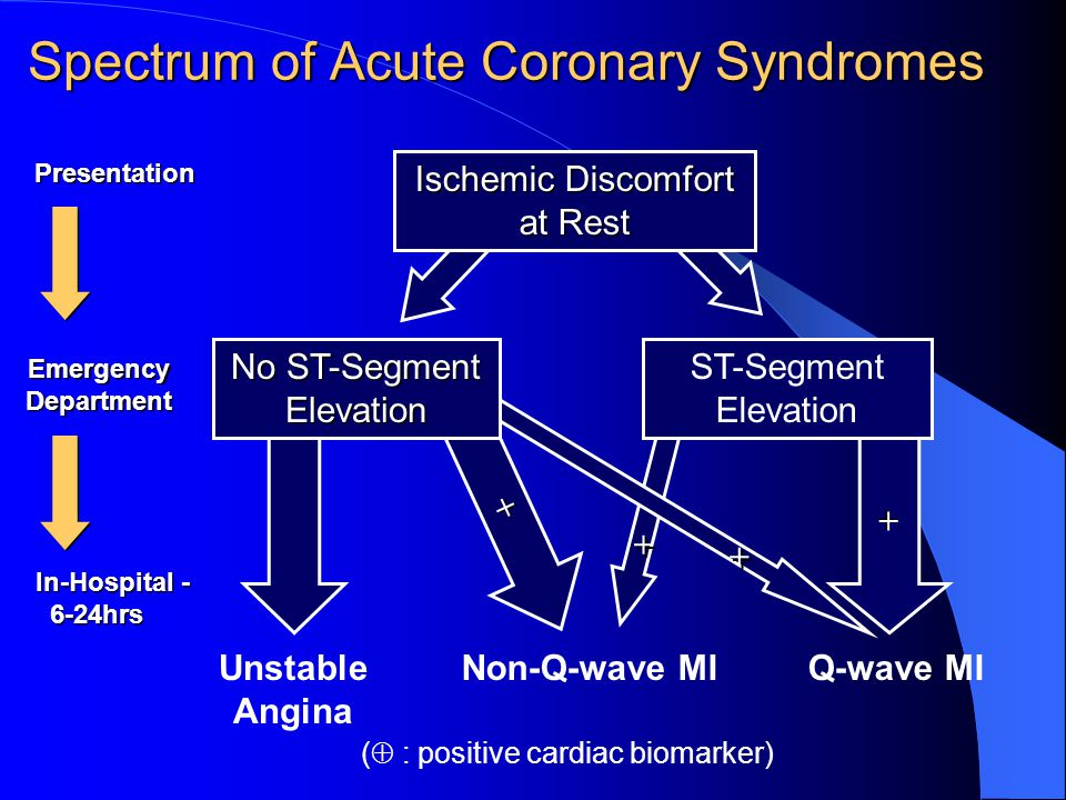 + + Ischemic Discomfort at Rest No ST-Segment Elevation Non-Q-wave MIUnstable Angina Q-wave MI ST-Segment Elevation + + + + ( : positive cardiac biomarker) EmergencyDepartment In-Hospital - 6-24hrs 6-24hrs Presentation Spectrum of Acute Coronary Syndromes