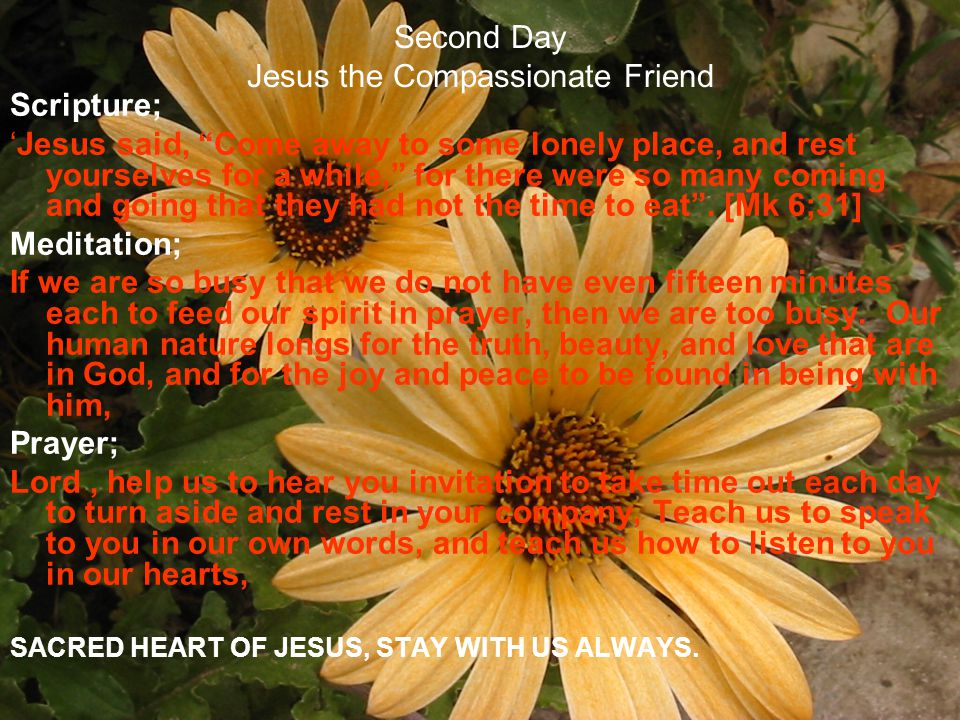 Second Day Jesus the Compassionate Friend Scripture; Jesus said, Come away to some lonely place, and rest yourselves for a while, for there were so ma