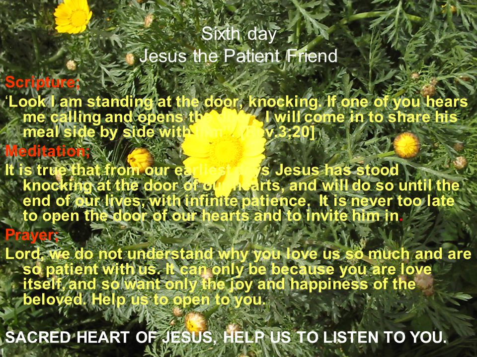 Sixth day Jesus the Patient Friend Scripture; Look I am standing at the door, knocking. If one of you hears me calling and opens the door, I will come