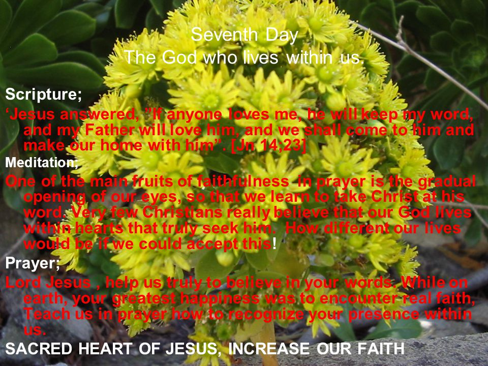 Seventh Day The God who lives within us. Scripture; Jesus answered, If anyone loves me, he will keep my word, and my Father will love him, and we shal