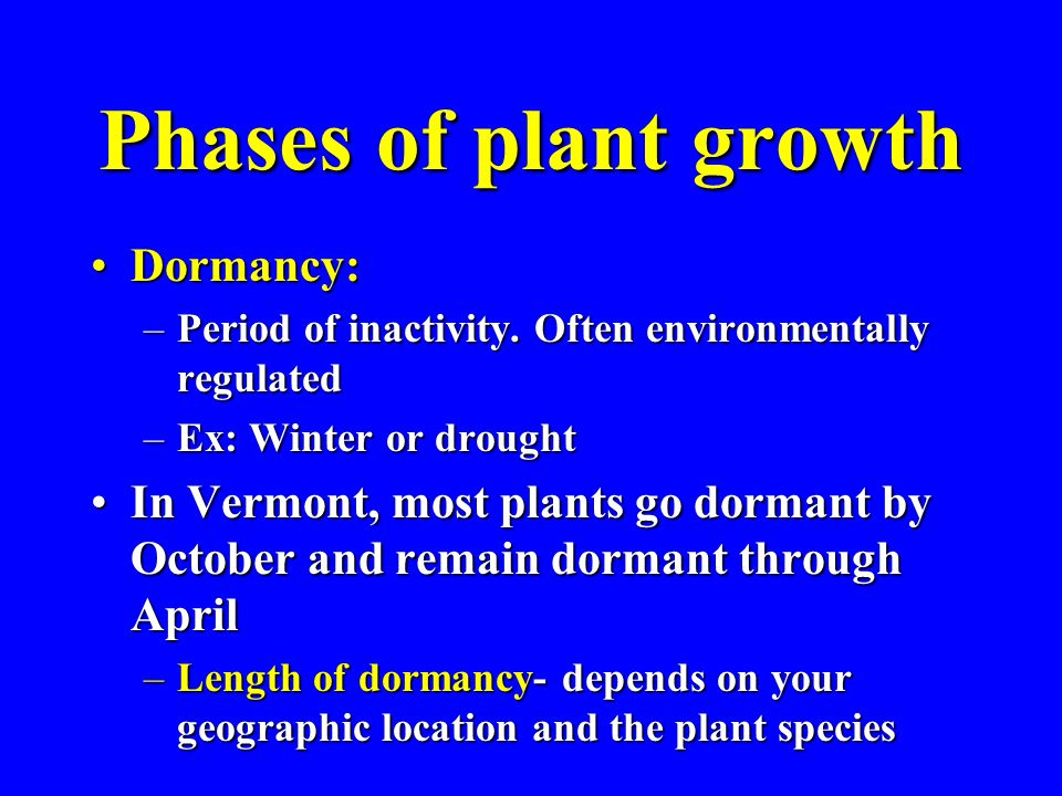 Phases of plant growth Dormancy:Dormancy: –Period of inactivity. Often environmentally regulated –Ex: Winter or drought In Vermont, most plants go dor
