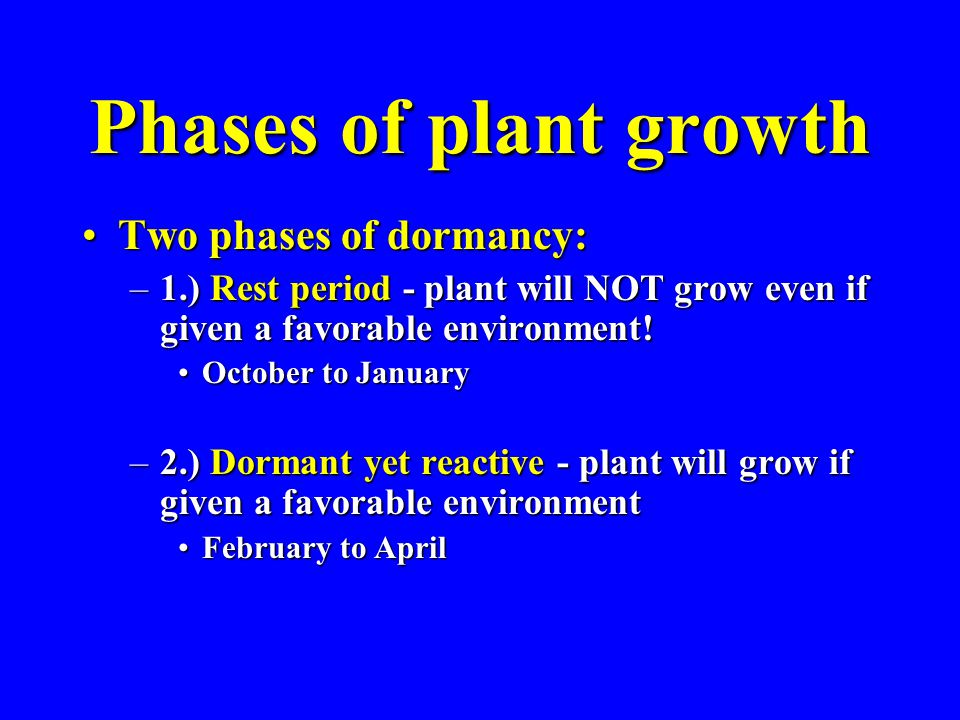 Phases of plant growth Two phases of dormancy:Two phases of dormancy: –1.) Rest period - plant will NOT grow even if given a favorable environment! Oc