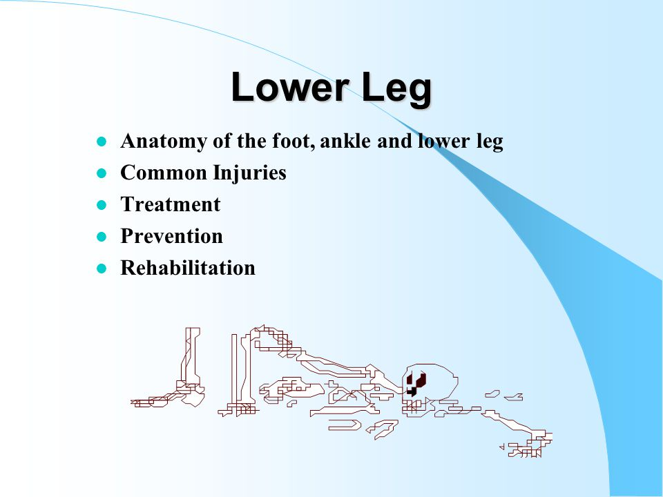 Foot, Ankle and Lower Leg Sports Medicine Chapters 14 & 15