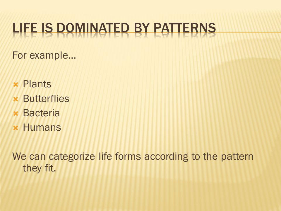 For example… Plants Butterflies Bacteria Humans We can categorize life forms according to the pattern they fit.
