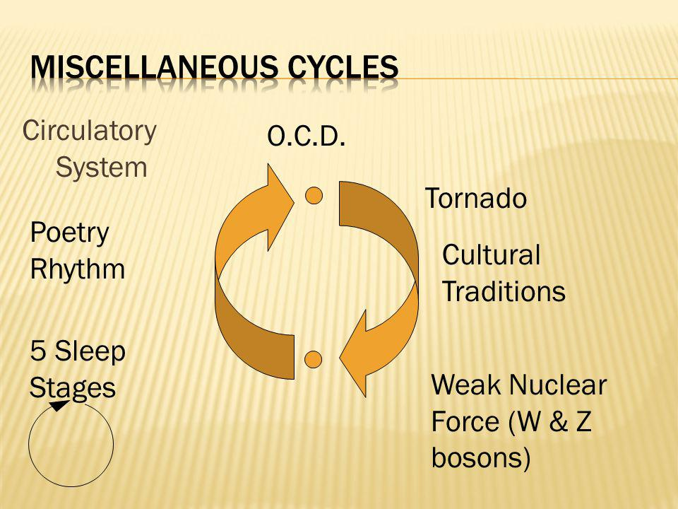 Circulatory System Cultural Traditions O.C.D. 5 Sleep Stages Tornado Weak Nuclear Force (W & Z bosons) Poetry Rhythm