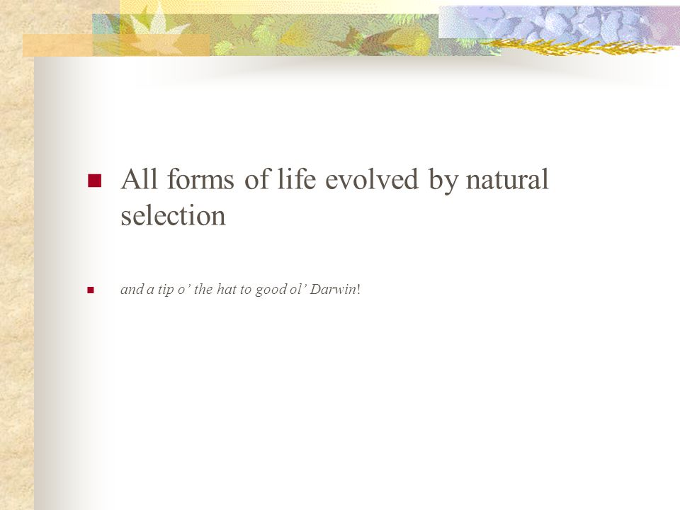 All forms of life evolved by natural selection and a tip o the hat to good ol Darwin!