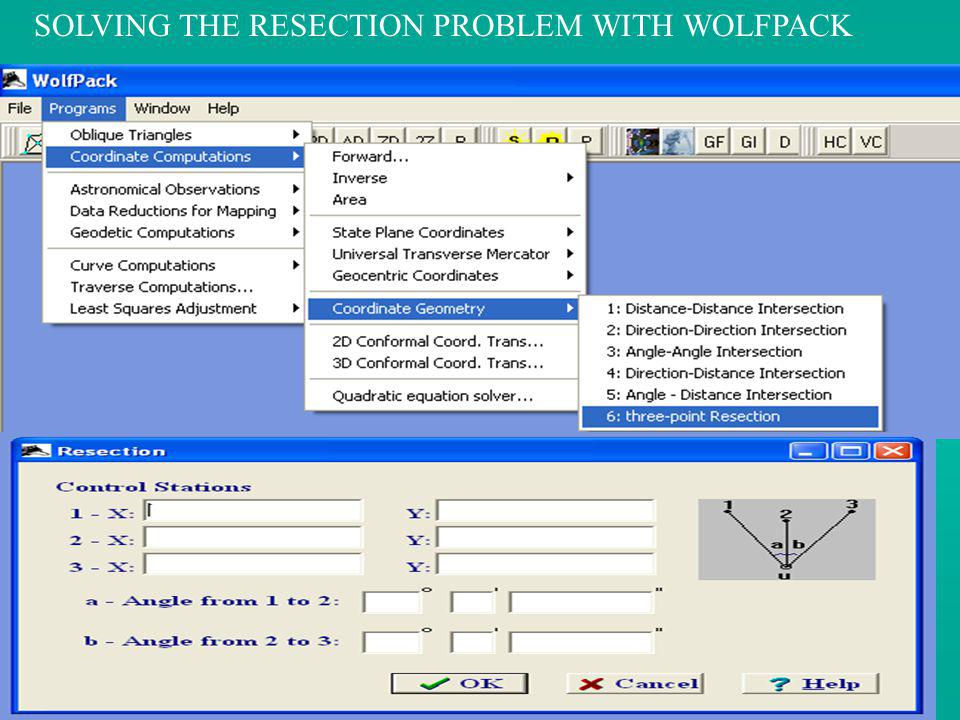 SOLVING THE RESECTION PROBLEM WITH WOLFPACK