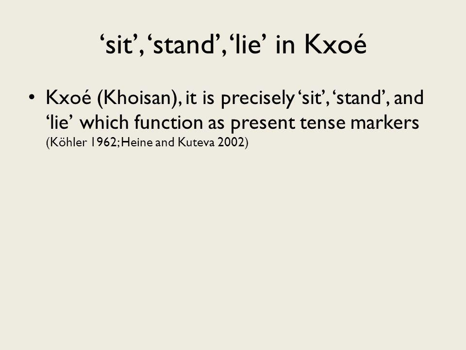 sit, stand, lie in Kxoé Kxoé (Khoisan), it is precisely sit, stand, and lie which function as present tense markers (Köhler 1962; Heine and Kuteva 2002)