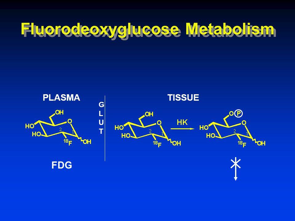 GLUTGLUT PLASMATISSUE FDG Fluorodeoxyglucose Metabolism