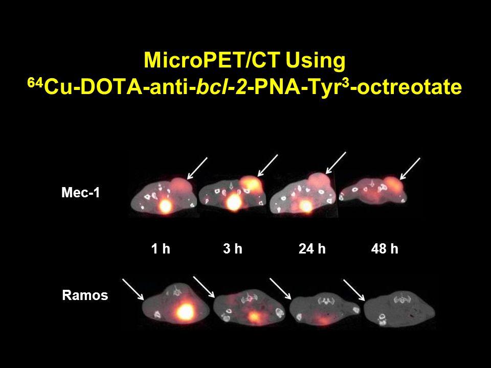 MicroPET/CT Using 64 Cu-DOTA-anti-bcl-2-PNA-Tyr 3 -octreotate Mec-1 Ramos 1 h 3 h 24 h 48 h