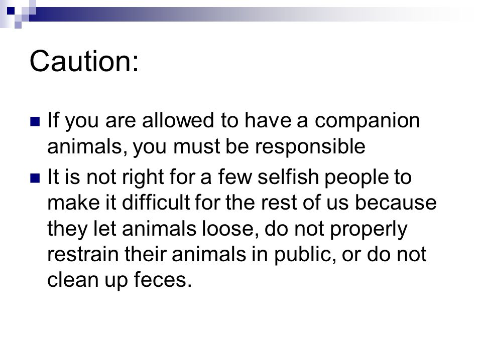 Caution: If you are allowed to have a companion animals, you must be responsible It is not right for a few selfish people to make it difficult for the