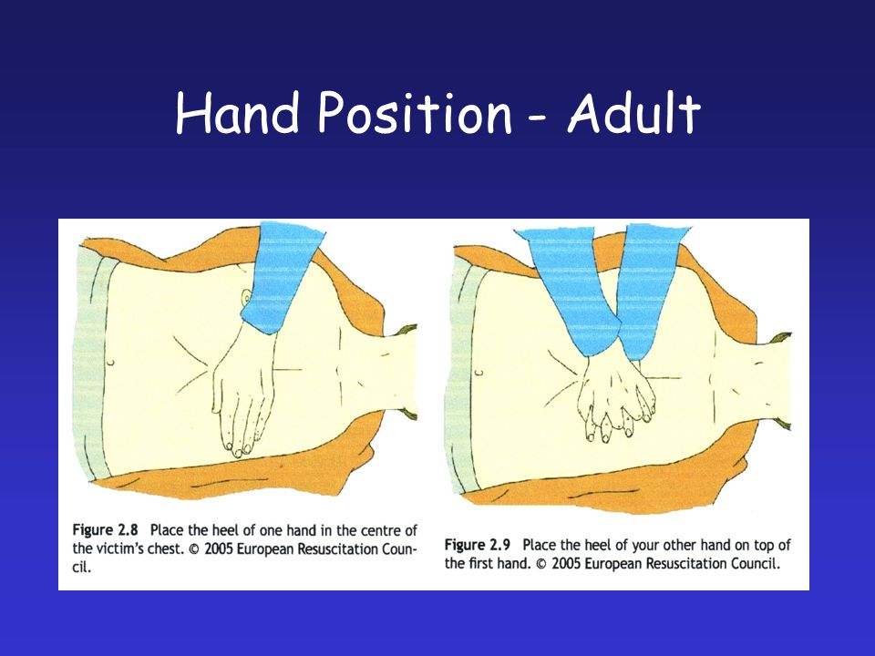 Hand Position - Adult