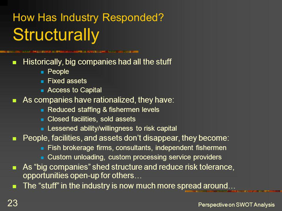 Perspective on SWOT Analysis 23 How Has Industry Responded.