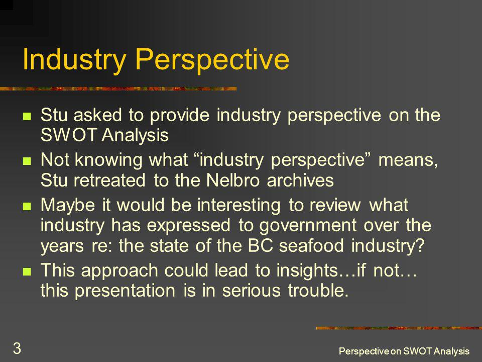 Perspective on SWOT Analysis 3 Industry Perspective Stu asked to provide industry perspective on the SWOT Analysis Not knowing what industry perspecti