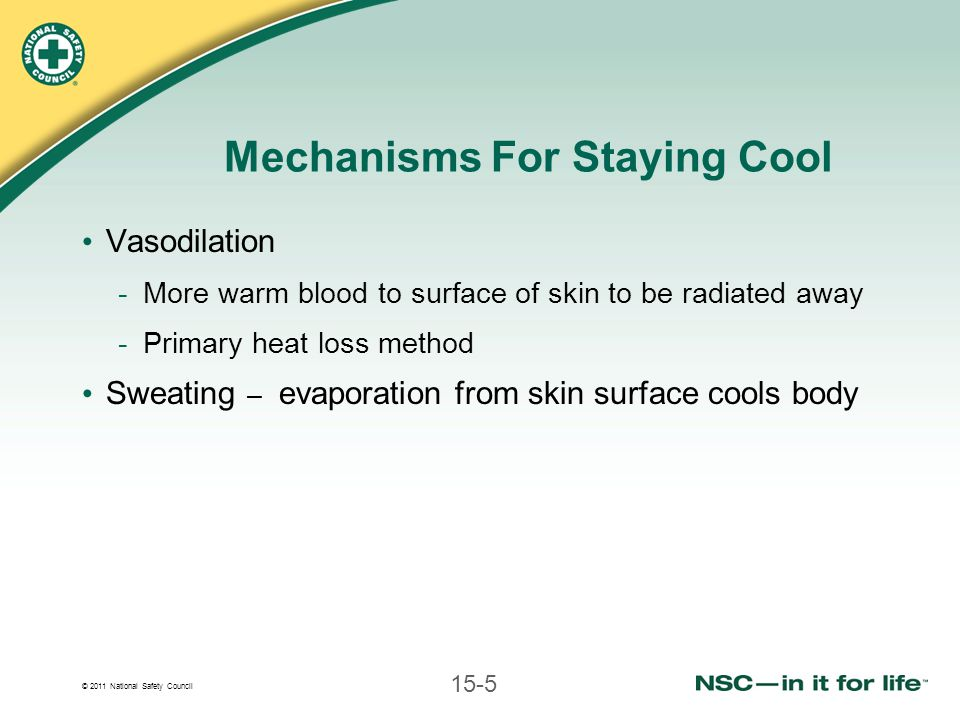 © 2011 National Safety Council 15-5 Mechanisms For Staying Cool Vasodilation -More warm blood to surface of skin to be radiated away -Primary heat loss method Sweating – evaporation from skin surface cools body