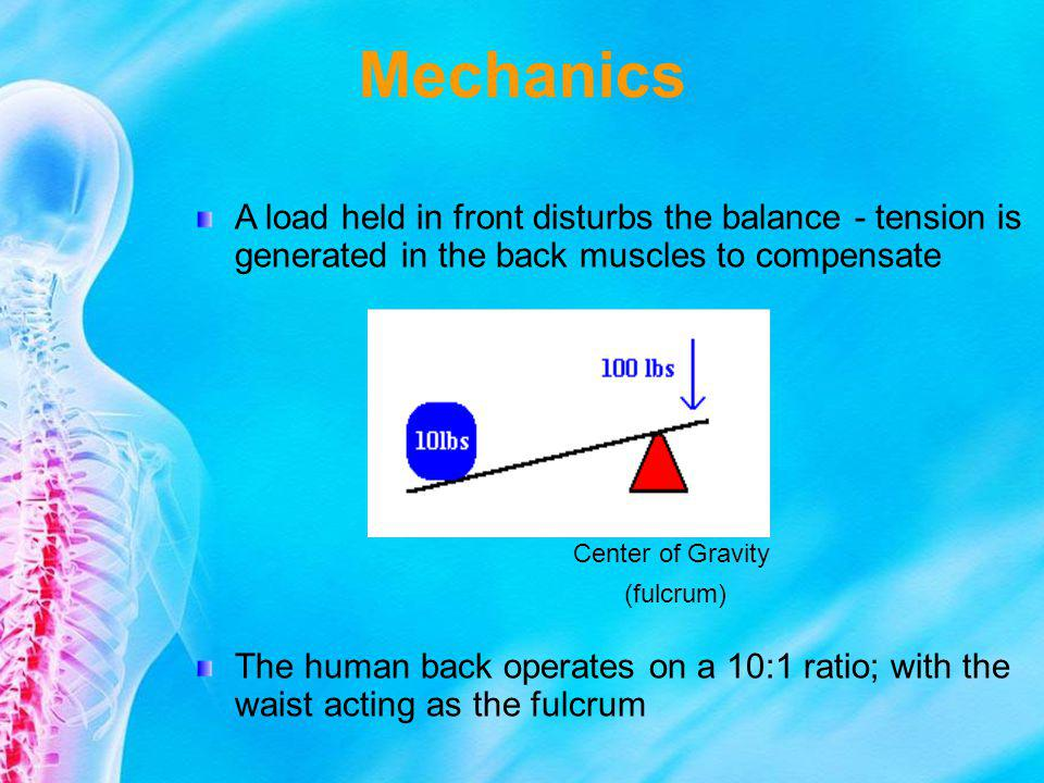 Mechanics A load held in front disturbs the balance - tension is generated in the back muscles to compensate The human back operates on a 10:1 ratio;