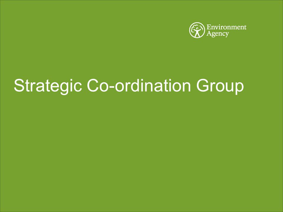 Strategic Co-ordination Group