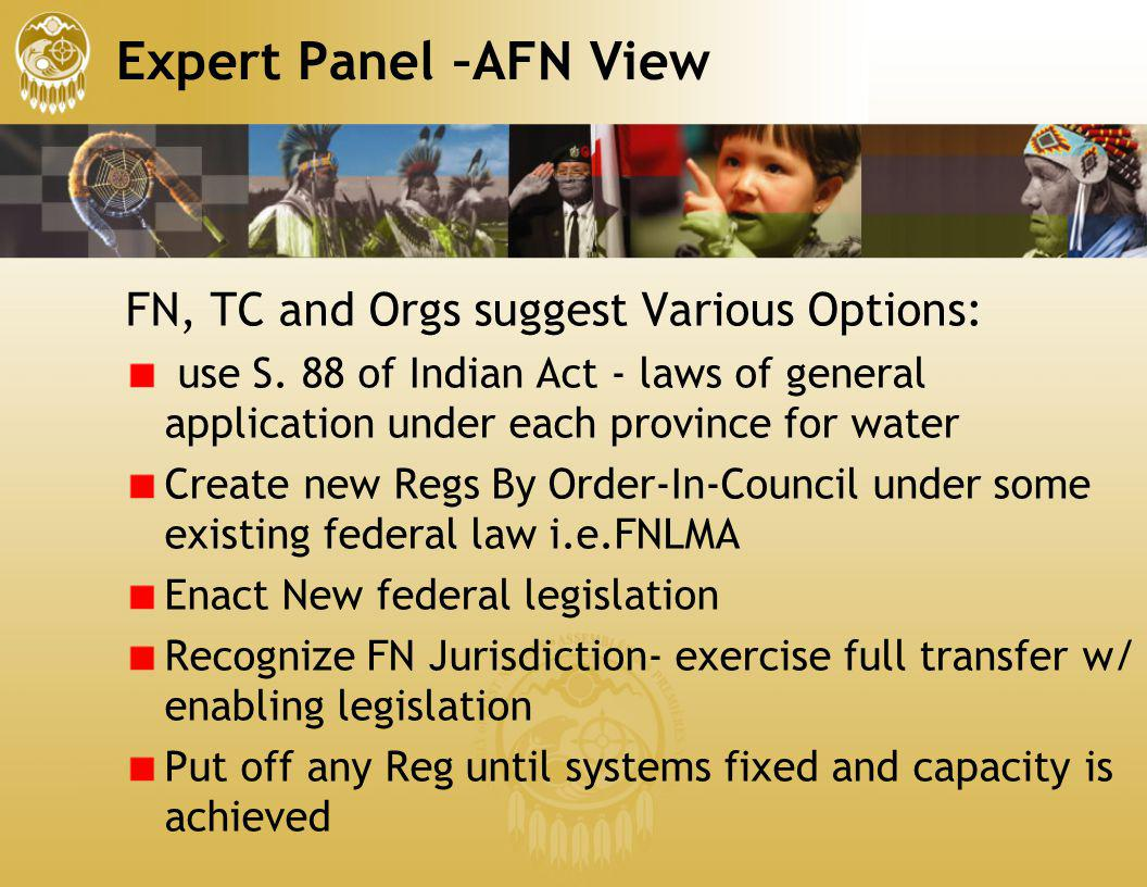 Expert Panel –AFN View FN, TC and Orgs suggest Various Options: use S. 88 of Indian Act - laws of general application under each province for water Cr