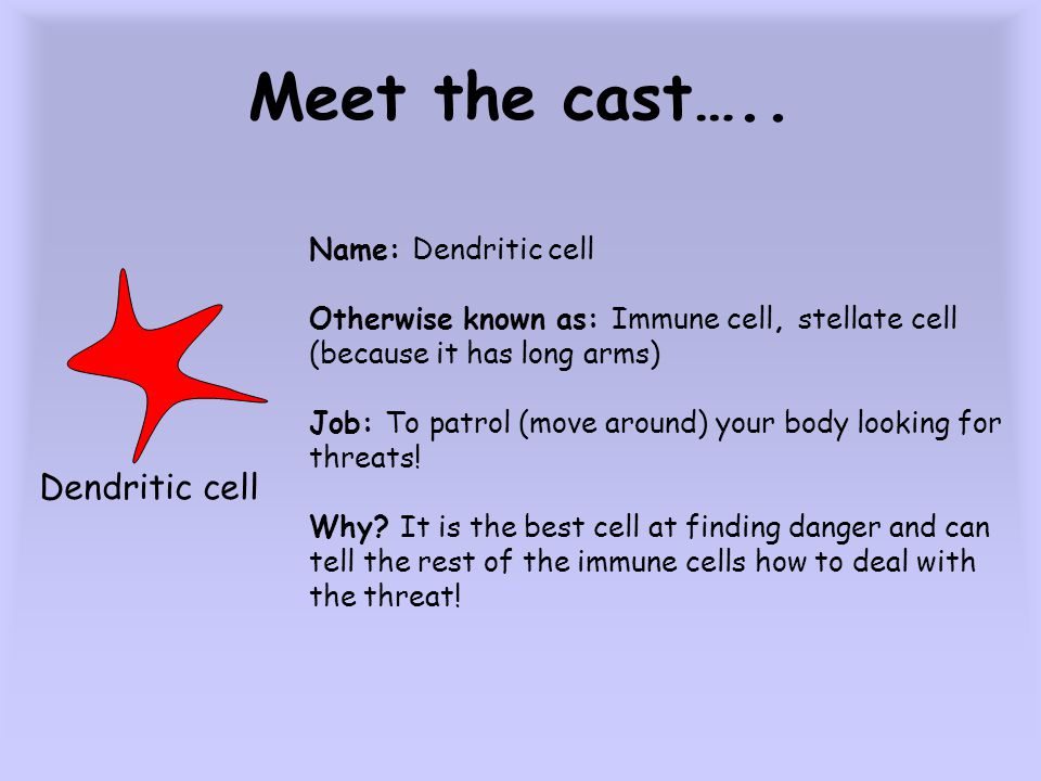 Meet the cast….. BUG Name: Bug Otherwise known as: bacteria, virus, parasite, worm Job: to get inside you and make more bugs! Why? It wants to stay al