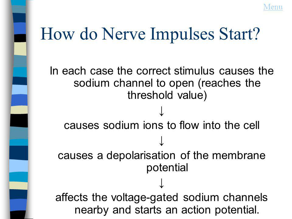 How do Nerve Impulses Start? In each case the correct stimulus causes the sodium channel to open (reaches the threshold value) causes sodium ions to f