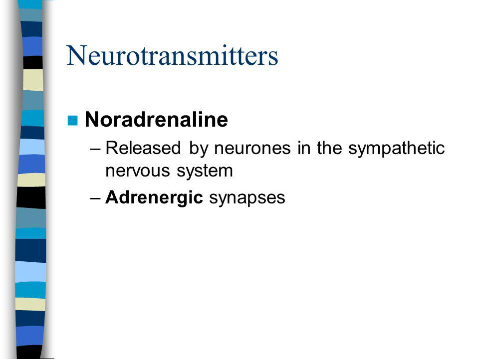 Neurotransmitters Noradrenaline –Released by neurones in the sympathetic nervous system –Adrenergic synapses
