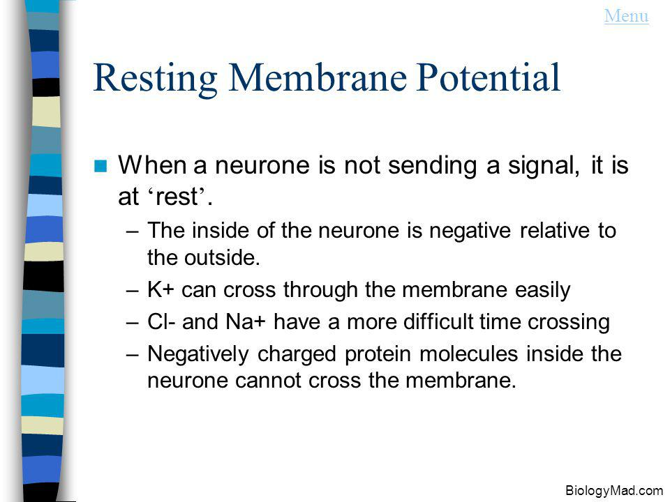 When a neurone is not sending a signal, it is at rest.