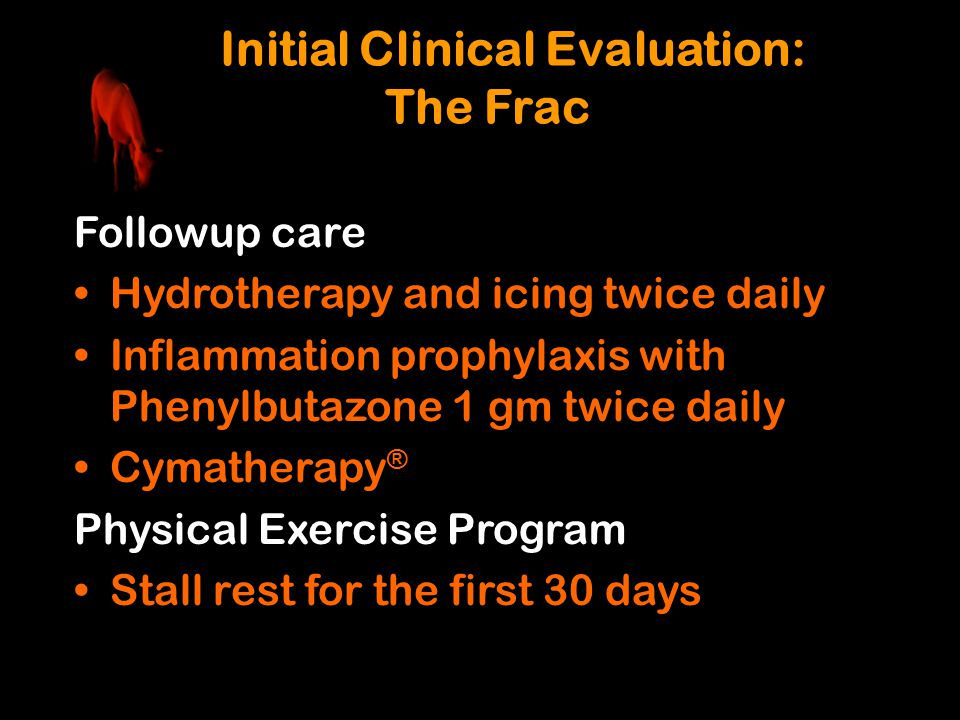 Initial Clinical Evaluation: The Frac Followup care Hydrotherapy and icing twice daily Inflammation prophylaxis with Phenylbutazone 1 gm twice daily C