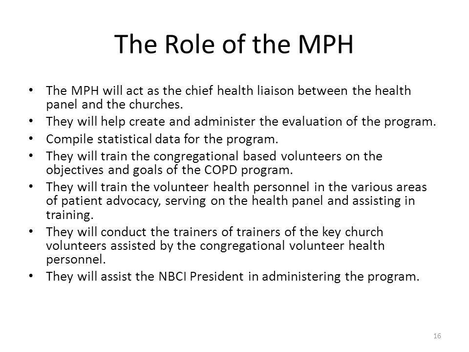 The Role of the MPH The MPH will act as the chief health liaison between the health panel and the churches.
