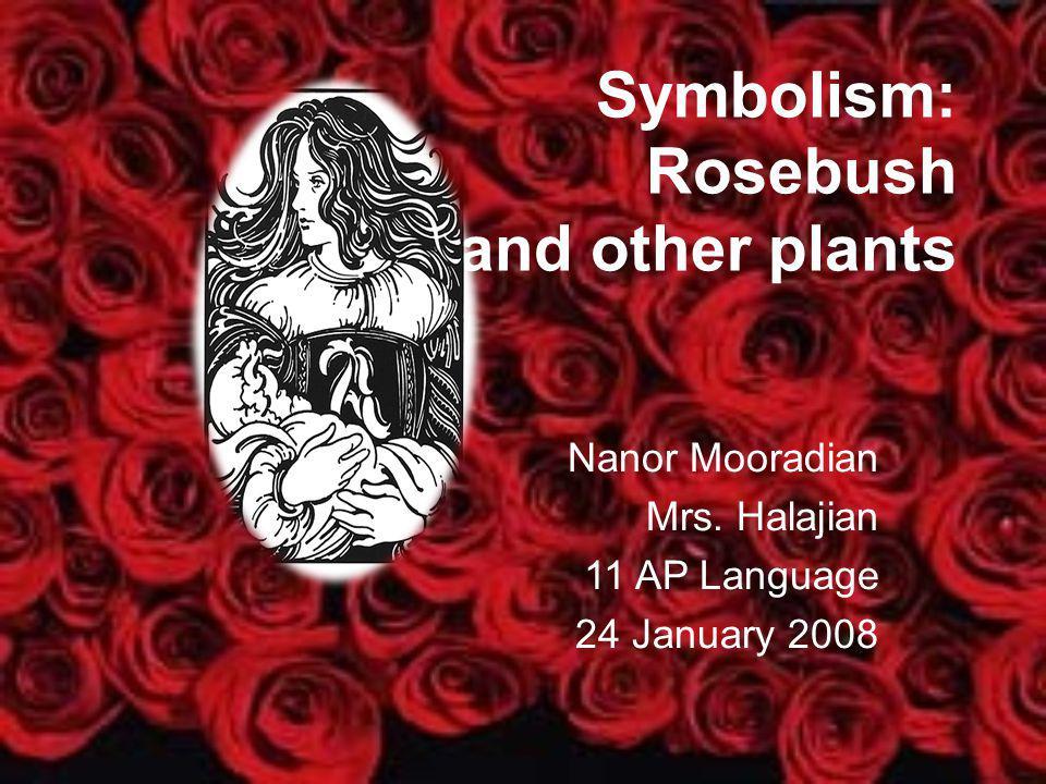 Symbolism: Rosebush and other plants Nanor Mooradian Mrs. Halajian 11 AP Language 24 January 2008