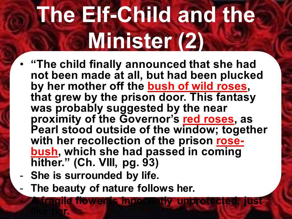 The Elf-Child and the Minister (2) The child finally announced that she had not been made at all, but had been plucked by her mother off the bush of wild roses, that grew by the prison door.