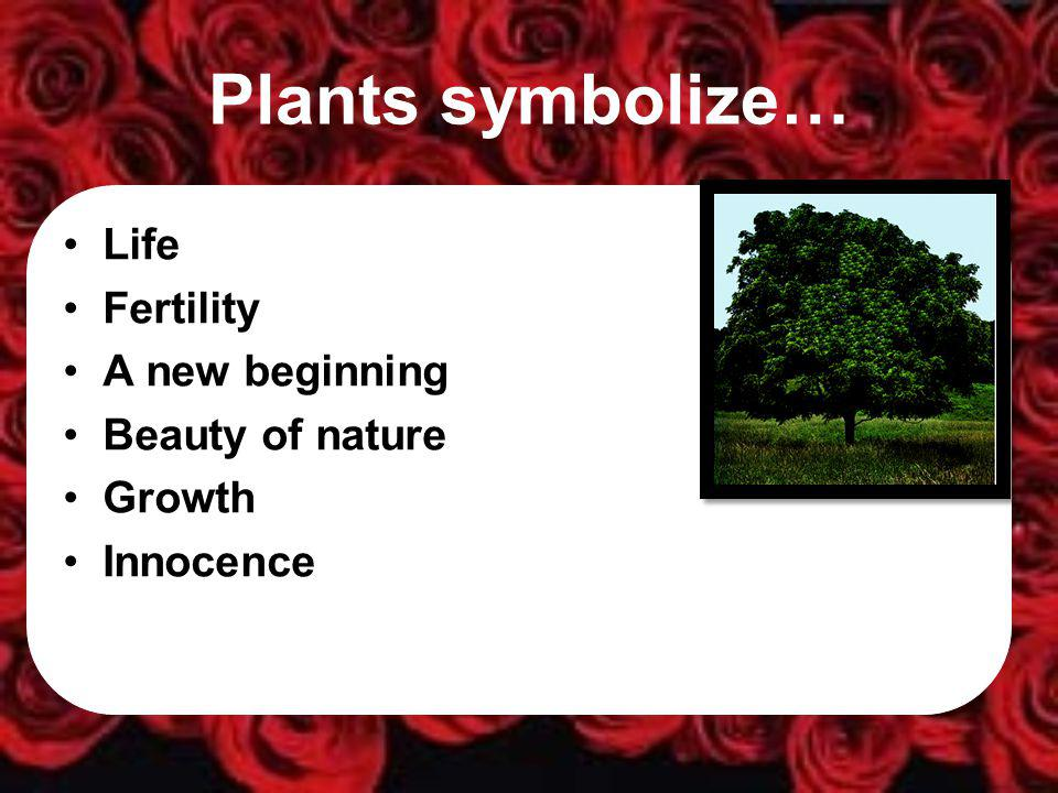 Plants symbolize… Life Fertility A new beginning Beauty of nature Growth Innocence