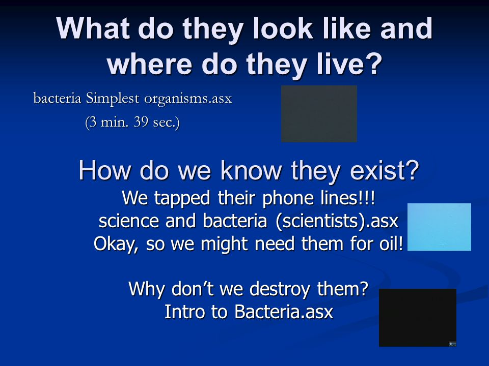 What do they look like and where do they live? bacteria Simplest organisms.asx (3 min. 39 sec.) How do we know they exist? We tapped their phone lines