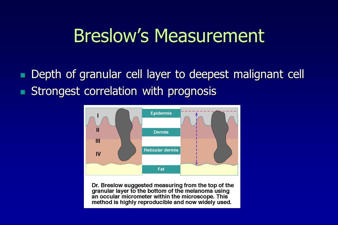 Breslows Measurement Depth of granular cell layer to deepest malignant cell Depth of granular cell layer to deepest malignant cell Strongest correlation with prognosis Strongest correlation with prognosis