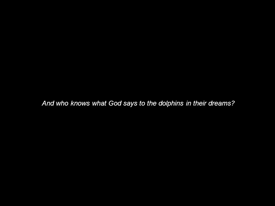And who knows what God says to the dolphins in their dreams?