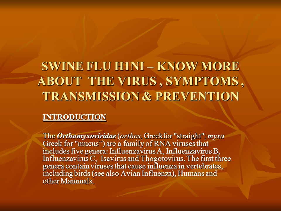 SWINE FLU H1NI – KNOW MORE ABOUT THE VIRUS, SYMPTOMS, TRANSMISSION & PREVENTION INTRODUCTION The Orthomyxoviridae (orthos, Greekfor