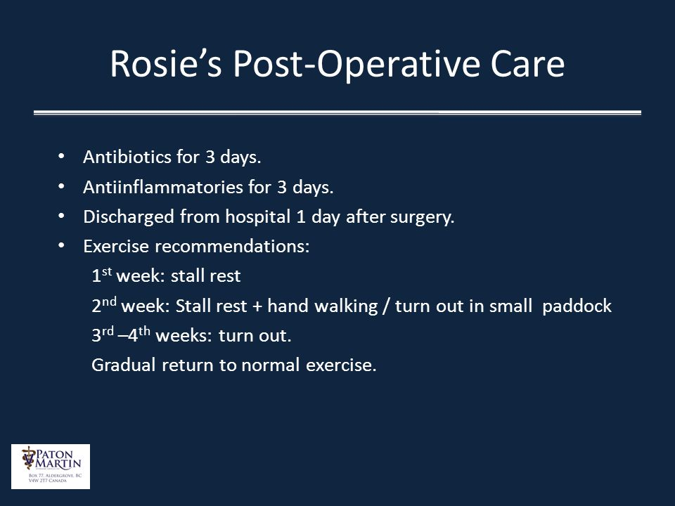 Rosies Post-Operative Care Antibiotics for 3 days. Antiinflammatories for 3 days. Discharged from hospital 1 day after surgery. Exercise recommendatio